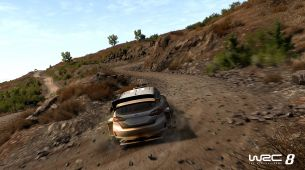 Esports players have seen WRC 8 to provide feedback