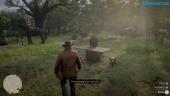 Red Dead Redemption 2 - Camp Gameplay