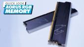 Aorus RGB Memory - Quick Look